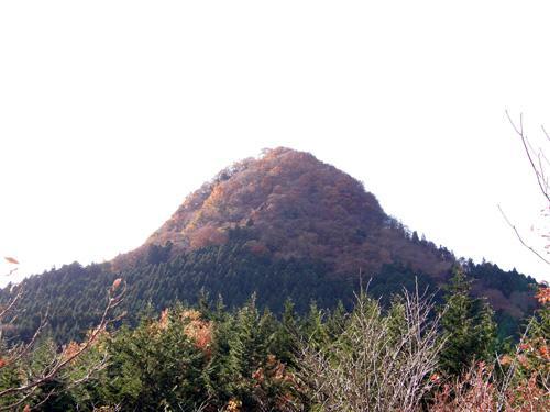ohokuoff1_6.jpg